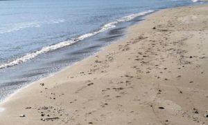 Spiaggia mare costa